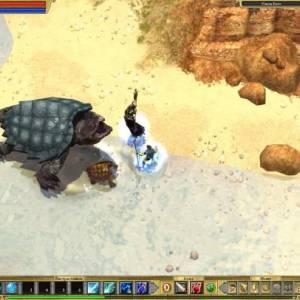 Heroes vs Turtle
